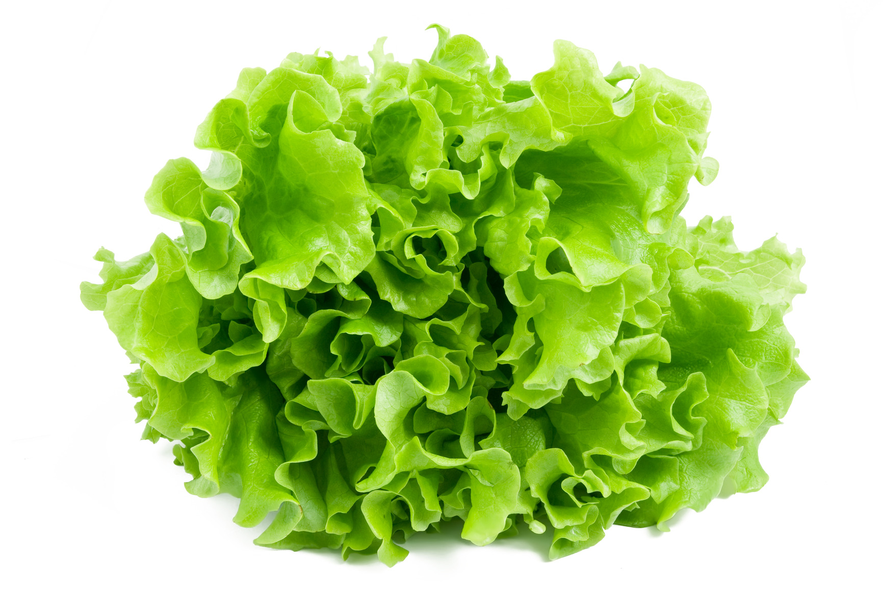 Leafy No-Lettuce Salad Recipe — Dishmaps